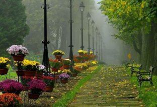 Все дороги ведут в осень.